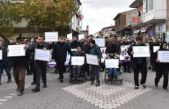 Ahlat'ta Engelliler İçin Farkındalık Yürüyüşü
