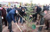 Ahlat'ta 1500 Fidan Toprakla Buluştu