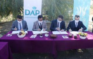 DAP ve DAKA'dan Bitlis'teki Elma Yetiştiricilerine...