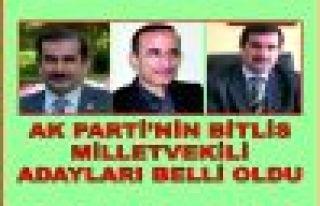 AK PARTİ'NİN BİTLİS MİLLETVEKİLİ ADAYLARI...